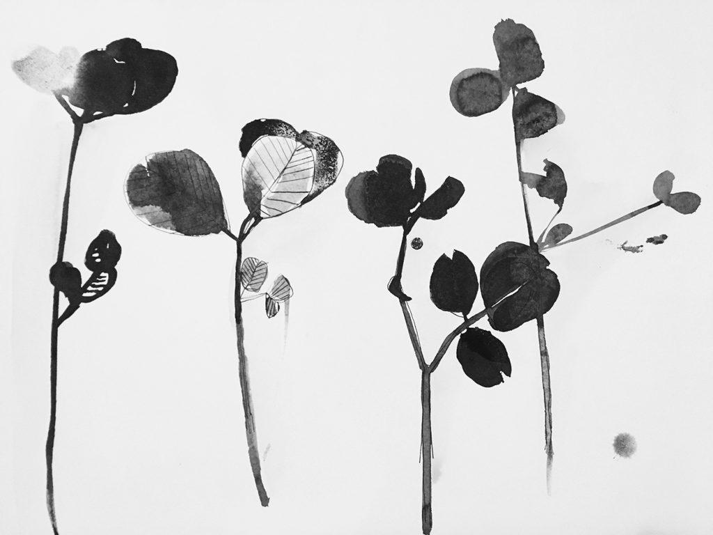 desenhos a tinta da china